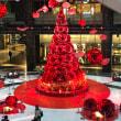 ••グランフロントのクリスマスツリー••