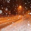 #5627 大雪だー