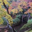 京都・修学院離宮(2)