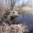 湿原へ、初釣り