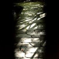 4258 光と影