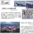 新4K8K衛星放送 番組表 NHK4K8K BSフジ BS TBS BS朝日 BSテレ東 多難な船出