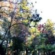 秋の遠足・大津 2