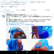 2月13日(水)のつぶやき 1.2万フォロワー FF比 良いバランス 株式会社AD-CREATE【公式】PR Twitter SNS 最軽量・改 事務処理第一弾終了→第二弾へ