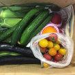 今年も新鮮な野菜をいただきました〜♪