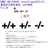山中伸弥氏の論文画像類似事案(捏造指摘ではない)