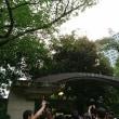 8/5 スタレビ楽園音楽祭2017 根本要・柿沼清史 還暦スペシャル in 日比谷野外大音楽堂