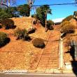 一月末のだるま市で賑わう「寳亀山鶴林寺」