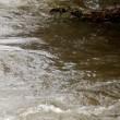 10日前に茶濁増水した流れも