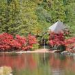 国宝白水阿弥陀堂の紅葉
