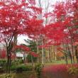 豊平公園 札幌豊平区