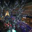 倉敷イオンモール、クリスマスイルミネーション