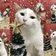 ☆Merry Christmas★