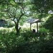 きょうの旅 ーー 二伝寺の井戸 ーー
