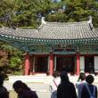 【最後の砦だった扶蘇山城】百済歴史遺跡へのFAM⑤2017/10/28