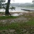 木崎湖キャンプ、避暑中です。