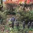 ズースが木を齧る&篠山の紅葉