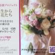 東京堂さんで展示会&ワークショップ 5/14から