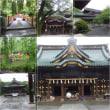 同期の仲間と寸又峡、修善寺への旅3