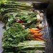 #野菜洗い