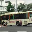 【ラッピング】P-S662【派手w】