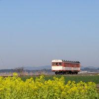 ◆鹿島鉄道「休日は2連を運行」 - 2007/3/11
