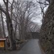 春分の日;雪に追われてトンボ返りの小諸・菱野温泉の旅