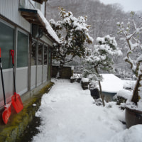 適度な降雪量