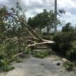 ハリケーン・イルマ/Hurricane Irma