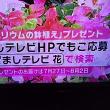 7/18・・・めざましテレビお花プレゼント(本日2時まで)