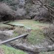 青麻神社の滝