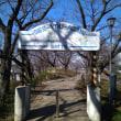 2月8日(木曜日)‥‥権現堂公園ウォーキング