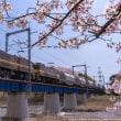 春爛漫!の三岐線を行くED457&456