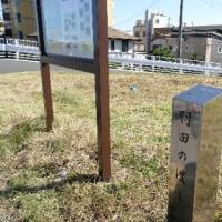 多摩川サイクリング〜川崎側下流篇