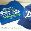2017年夏 東西オールスター戦(Aチーム)
