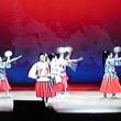 「海蛍歌踊ショー」