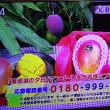11/25・・・旅サラダプレゼント(本日正午まで)