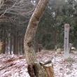 十年~六郎谷~横行(雪)