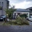 台風21号のつめ跡