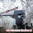 桜と暮らす家 東京都世田谷区・古屋邸【渡辺篤史の建もの探訪】