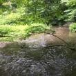 ドリアン長野の鳥取旅行記 平成30年7月