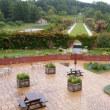 雨でしたが、ユニガーデンの美しい景観