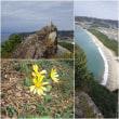 岩戸山 と原城址