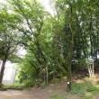 狭間公園とイーアス高尾 2018.6.17