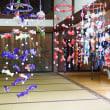 熊谷市能護寺紫陽花