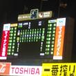 ヤクルト阪神戦でおうえんした。