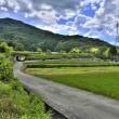 二上山の麓の風景/奈良県葛城市加守