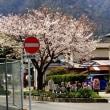 桜 警察・区役所