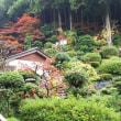 湯楽庭園も紅葉です。