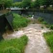 濁流の三沢川